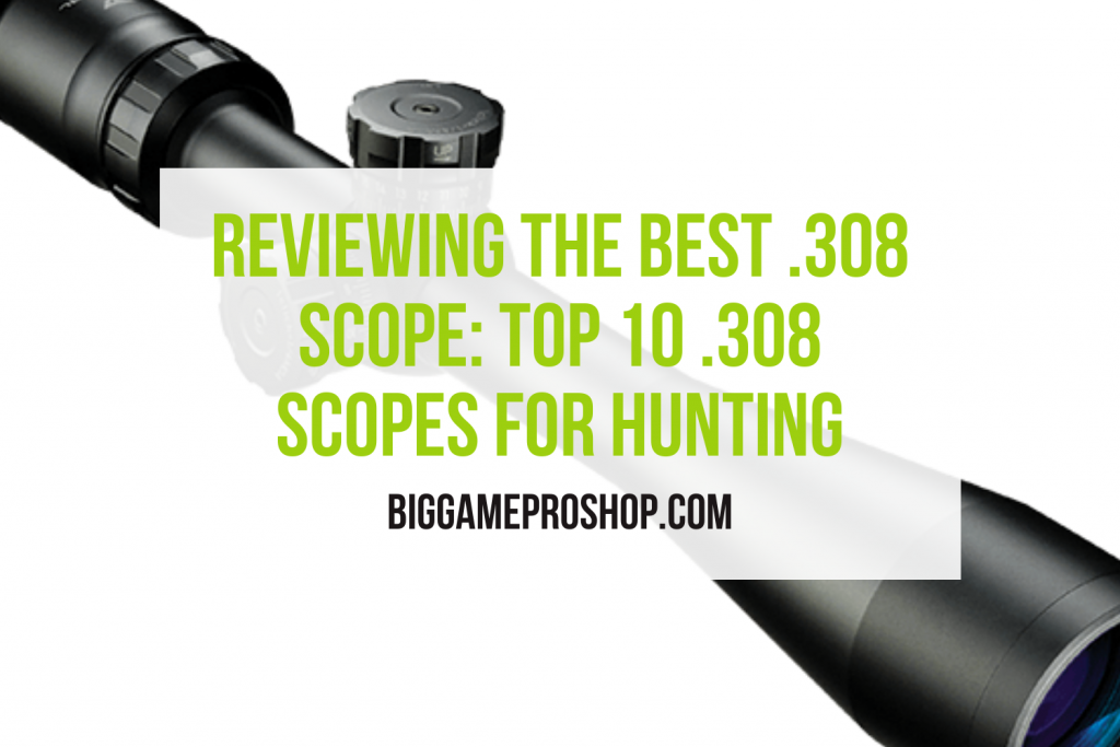 The Best .308 Scopes