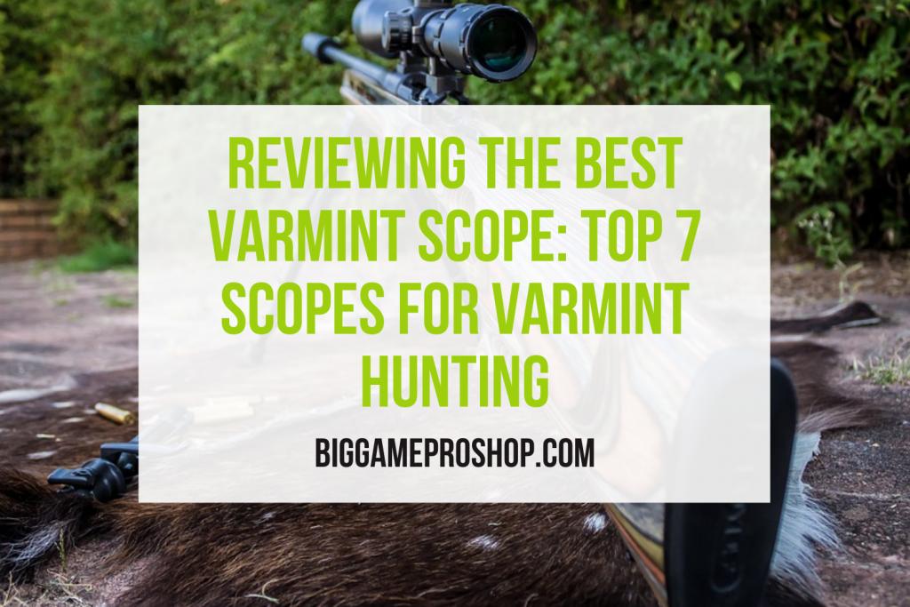 Best Varmint Scopes
