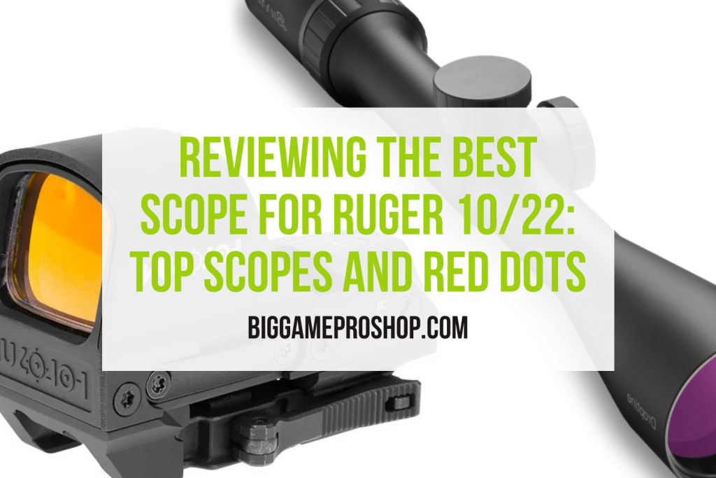 The Best Scope for Ruger 10/22