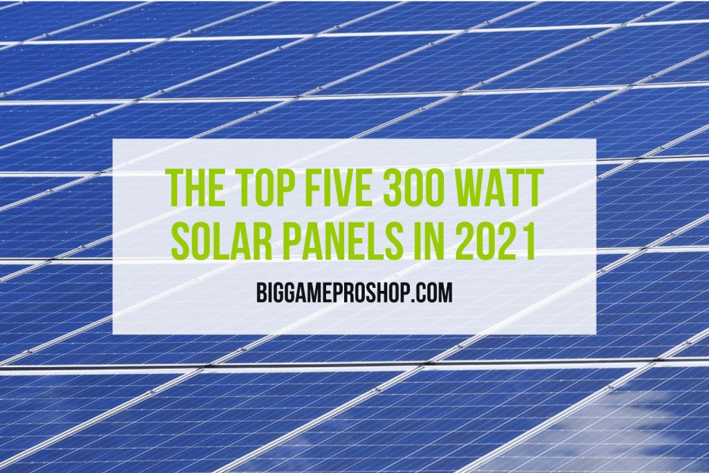 The Top Five 300 Watt Solar Panels In 2021
