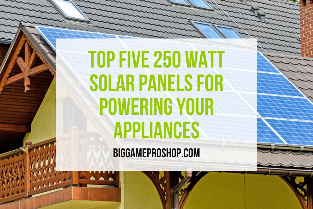Top Five 250 Watt Solar Panels